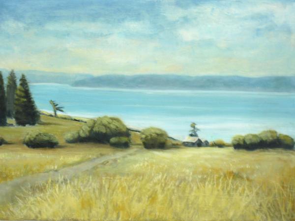 Ebey's Prairie - Summer